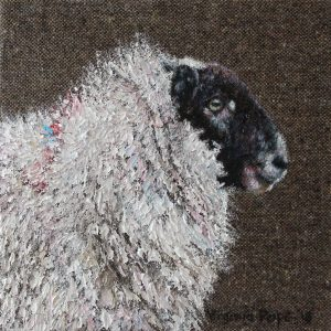 'Wool to Weave'